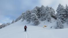 herrlicher Schnee