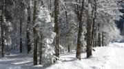 Winter im Klöntal