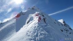 Wühlarbeit am Gipfel