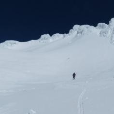 AlpinoF immer noch voraus