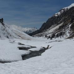Alp Sardasca.